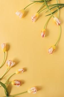 Желтые цветы тюльпана на желтом.