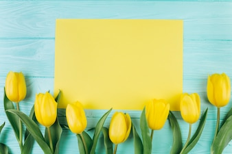 Yellow tulips and postcard on a blue wooden background