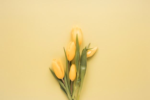 Yellow tulips bouquet on table