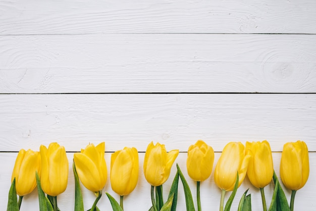 Yellow tulips bunch on white wooden planks rustic barn rural table backgropund. empty space for lettering, text, letters, inscription. beautiful horizontal flat lay postcard template.