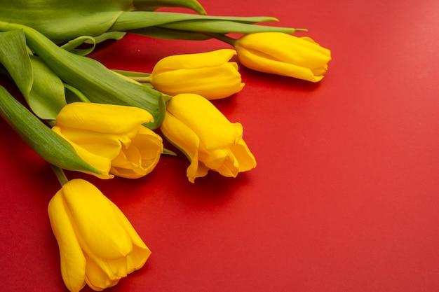 赤い背景の上の黄色のチューリップの花。春を待っています。幸せなイースターカード。フラット横たわっていた、トップビュー。テキストのスペースをコピー