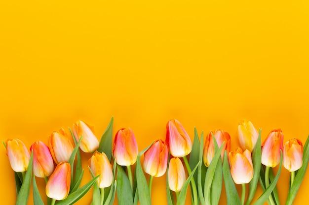 黄色の黄色のチューリップフレーム。