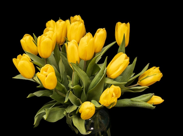 검정색 배경에 유리 꽃병에 노란색 튤립. 아름다운 꽃들. 발렌타인 데이. 3월 8일 고화질 사진
