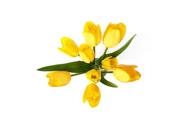 Желтые тюльпаны в вазе на белом фоне.