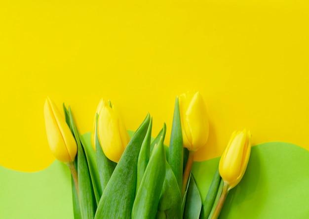 幾何学的な黄緑色の背景に黄色いチューリップ、ハッピーイースターのグリーティングカード、コピースペース