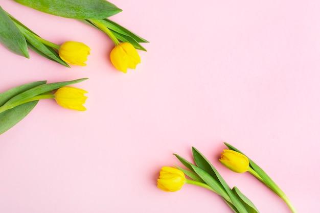 ピンクの背景に黄色のチューリップ