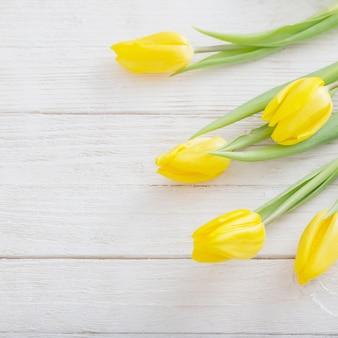 白い木製の背景に黄色のチューリップ