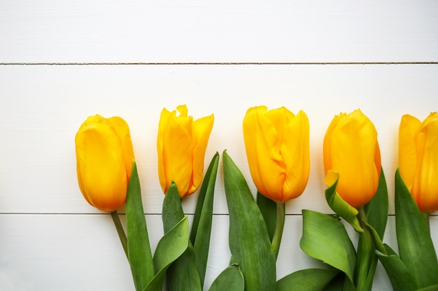 Yellow tulips on white wooden table. top view with copy space