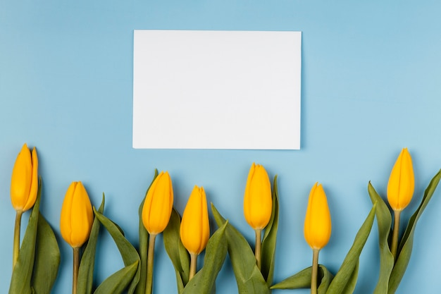 Yellow tulips with blank card