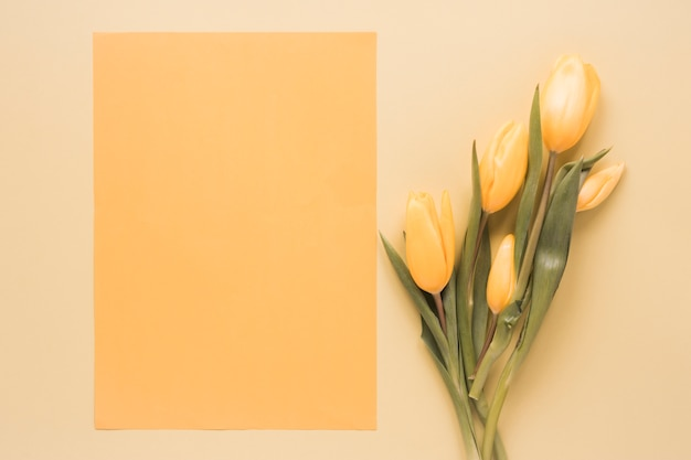 Yellow tulips with blank paper on table