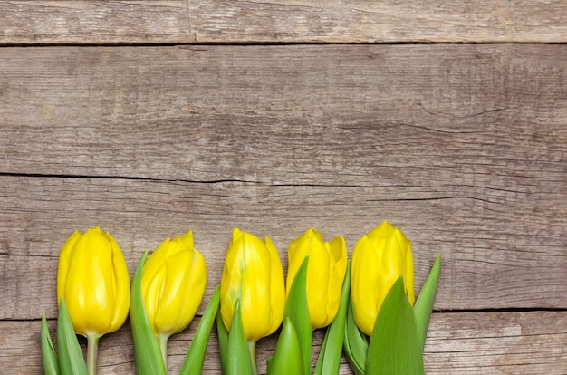 Yellow tulips on wood