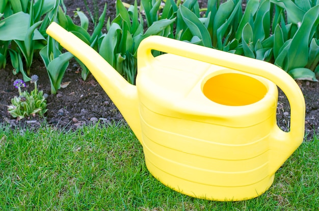 Yellow watering can for watering plants in garden.