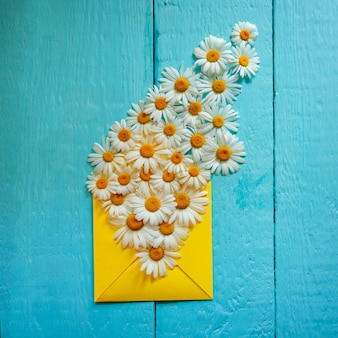 Yellow wenvelope with camomile on blue wooden background. top view.