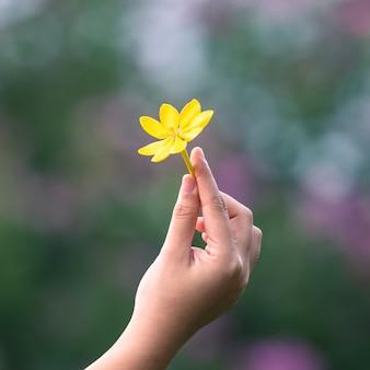 Yellow on woman hand
