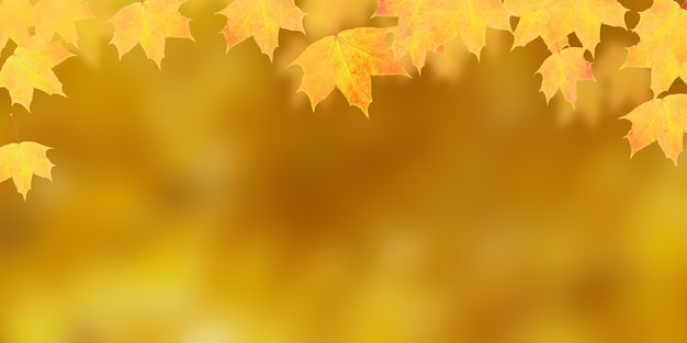 コピースペースバナー形式でオレンジ色の背景に黄橙色のカエデの葉