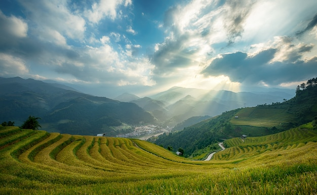 ベトナムのyenbai、mu cang chaiのテラスのライスフィールド。ベトナムの風景。