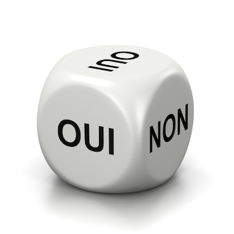 Yes or no french white dice