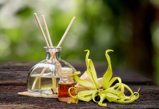 Ylang-ylang or cananga odorata flower on nature .
