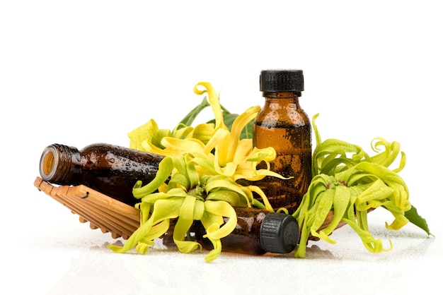 Ylang-ylang or cananga odorata flowers and extracted in the   bottles isolated on white .