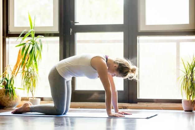 Yoga at home: cat pose