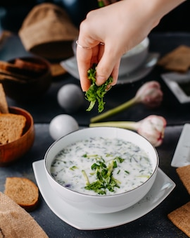 Yogurt dovga with greens inside round white plate along with bread loafs eggs on grey table