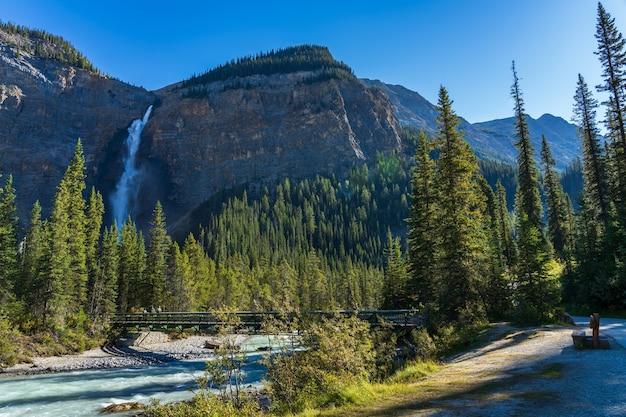晴れた日には、ヨーホー川がタカカウ滝の滝に架かる森の歩道橋を流れます。ヨーホー国立公園、カナディアンロッキー、ブリティッシュコロンビア、カナダ。