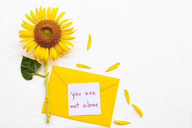 あなたはひまわりの近くの黄色い封筒のメッセージカードだけではありません Premium写真