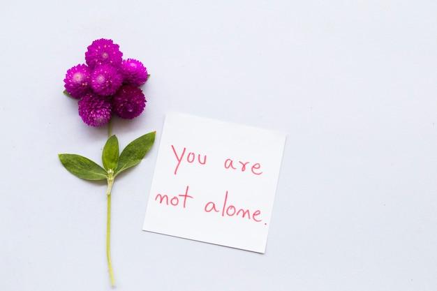 花のメッセージカードはあなただけではありません
