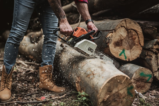 Young adult lumberjack or logger working in woods with chainsaw.