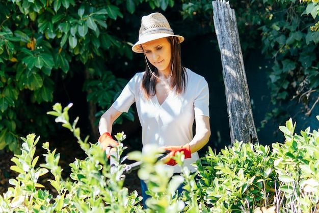 Young adult woman working in the home garden pruning a hedge