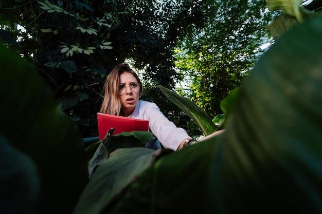 若い農業エンジニアは温室で葉を調べます