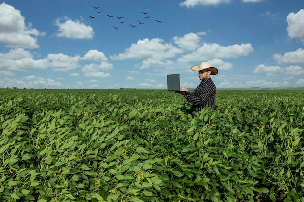 Young agronomist in hat holding  notebook in soybean field.