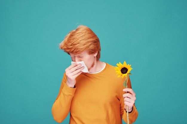 Young allergic man with sunflower blowing nose into paper tissue after smelling the flower while standing in front of camera