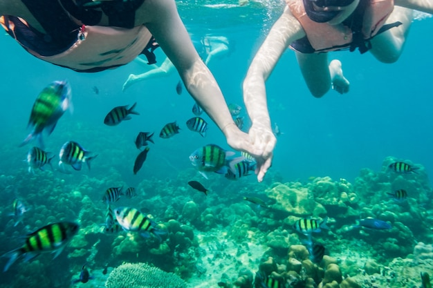 Young asian couple holding hands snorkeling with school of fish in tropical sea on vacation