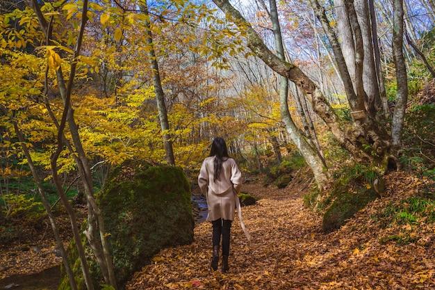 Young asian woman traveler enjoying the view of tatsuzawafudo waterfall in autumn fall season at fukushima, japan