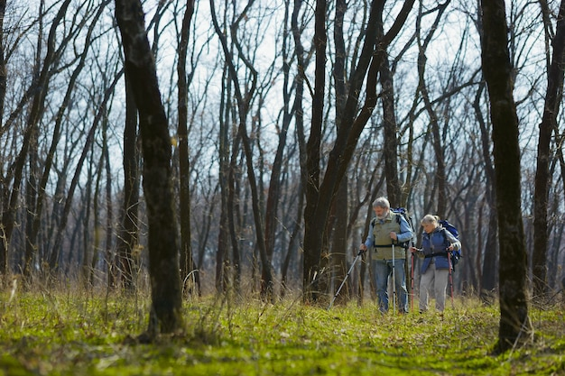 こころが若い。晴れた日に木の近くの緑の芝生を歩いて観光服の男女の老家族カップル。観光、健康的なライフスタイル、リラクゼーションと一体感の概念。