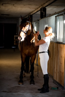 Young athlete takes care of her horse in evening after training.