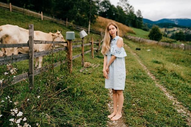 시골에서 암소와 함께 포즈 블루 로맨틱 드레스에 젊은 매력적인 우아한 금발 소녀