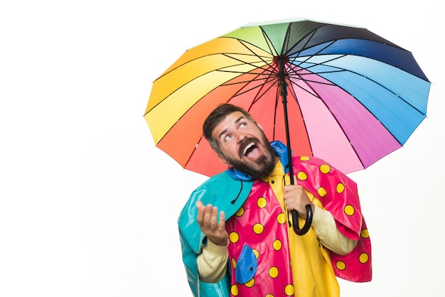 Young attractive man in raincoat under colored umbrella is he trying to see if there is rain. brutal bearded man with rainbow-colored umbrella isolated on white background. raining concept.