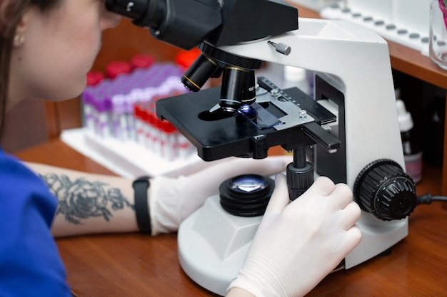 Young attractive veterinary worker in gloves using microscope for testing blood samples of animals. vet doctor looking into microscope, close-up.