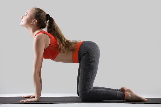 Young attractive woman in the bitilasana pose, grey studio backg