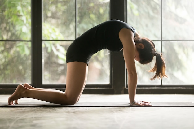 Young attractive woman in cat, marjaryasana pose