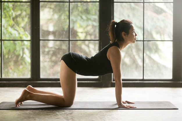 Young attractive woman in cow, bitilasana pose