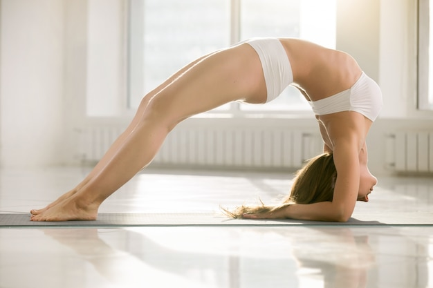 Young attractive woman in elbow bridge pose, white color backgro