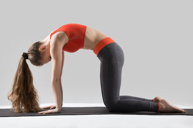Young attractive woman in the marjaryasana pose, grey studio bac