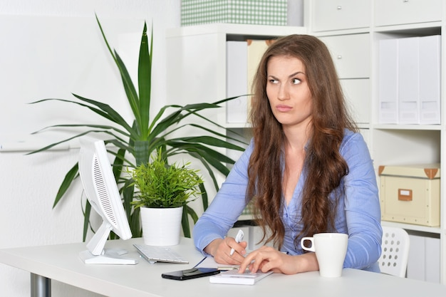 Young attractive woman with laptop working at office