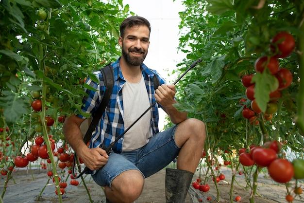 Giovane barbuto lavoratore agricoltore spruzzare piante con pesticidi per proteggersi dalle malattie