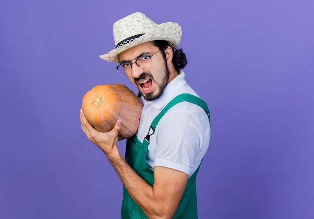 Молодой бородатый садовник в комбинезоне и шляпе держит тыкву, глядя вперед с сердитым лицом, стоящим над синей стеной