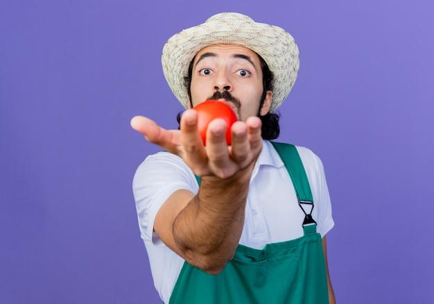 Молодой бородатый садовник в комбинезоне и шляпе показывает свежий помидор, весело улыбаясь, стоя у синей стены