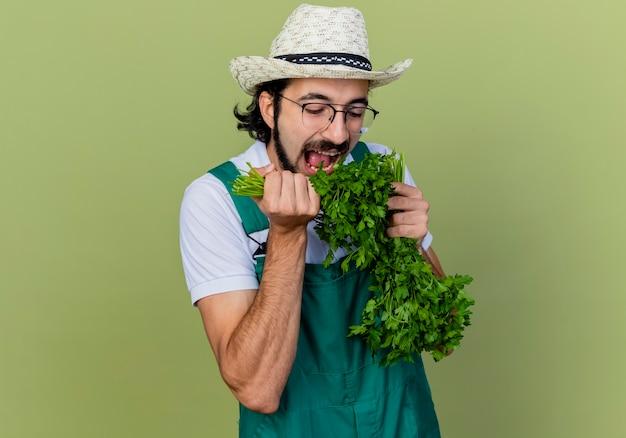 Giovane giardiniere barbuto uomo che indossa tuta e cappello che tiene erbe fresche mangiarlo in piedi sopra il muro verde chiaro